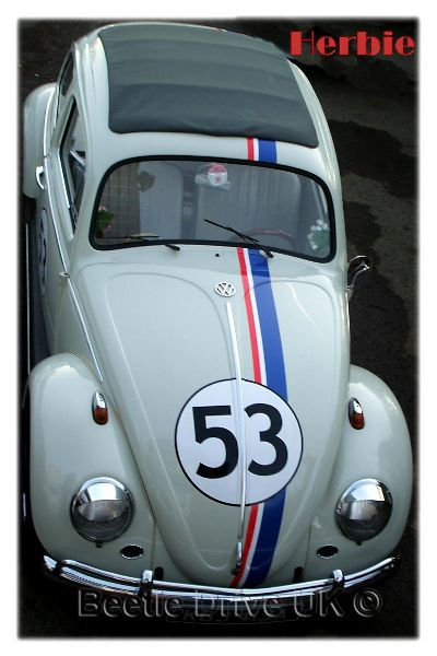 Herbie The Love Bug pic1